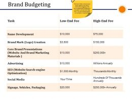 Brand Budgeting Presentation Visual Aids