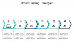 Brand Building Strategies Ppt Powerpoint Presentation Model Icon Cpb