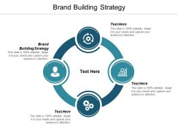 Brand Building Strategy Ppt Powerpoint Presentation File Vector Cpb