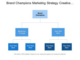 Brand Champions Marketing Strategy Creative Strategy Market Studies