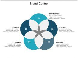 Brand Control Ppt Powerpoint Presentation Slides Background Cpb