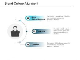 Brand Culture Alignment Ppt Powerpoint Presentation Pictures Ideas Cpb
