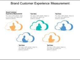 Brand Customer Experience Measurement Ppt Powerpoint Presentation Layouts Brochure Cpb