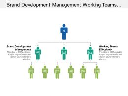 Brand Development Management Working Teams Effectively Iot Security Cpb