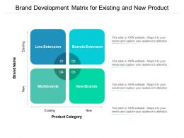 Brand Development Matrix For Existing And New Product