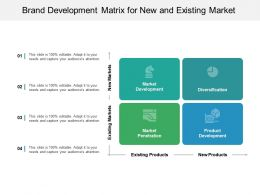 Brand Development Matrix For New And Existing Makret