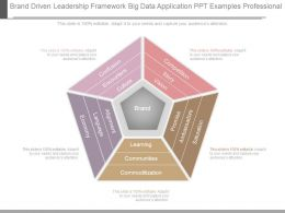 Brand Driven Leadership Framework Big Data Application Ppt Examples Professional