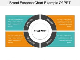 Brand Essence Chart Example Of Ppt