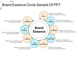 Brand Essence Circle Sample Of PPT