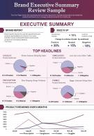 Brand Executive Summary Review Sample Presentation Report Infographic PPT PDF Document