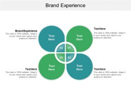 Brand Experience Ppt Powerpoint Presentation File Samples Cpb