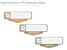 Brand Extension Ppt Examples Slides