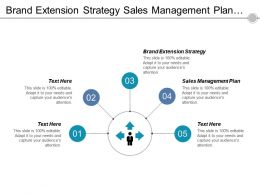 Brand Extension Strategy Sales Management Plan Target Audience Cpb