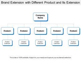 Brand Extension With Different Product And Its Extension