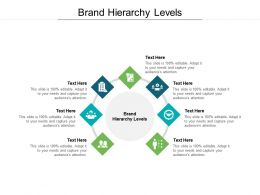 Brand Hierarchy Levels Ppt Powerpoint Presentation File Portrait Cpb