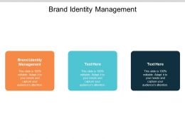 Brand Identity Management Ppt Powerpoint Presentation Show File Formats Cpb