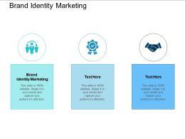 Brand Identity Marketing Ppt Powerpoint Presentation Professional Sample Cpb
