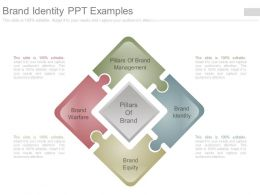 Brand Identity Ppt Examples