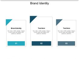 Brand Identity Ppt Powerpoint Presentation Slides Background Designs Cpb