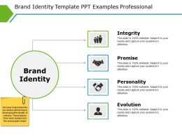 Brand Identity Template Ppt Examples Professional