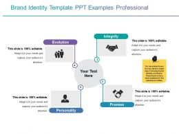 Brand Identity Template Ppt Examples Professional Powerpoint Slides