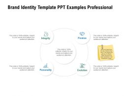Brand Identity Template Ppt Examples Professional Ppt Powerpoint Presentation File Styles