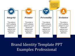Brand Identity Template Ppt Examples Professional Presentation Images