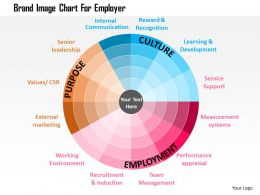 Brand Image Chart For Employer Flat Powerpoint Design