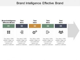 Brand Intelligence Effective Brand Ppt Powerpoint Presentation File Samples Cpb