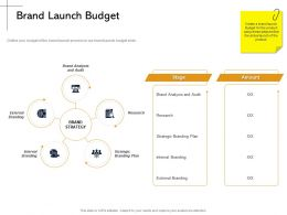 Brand Launch Budget And Audit Ppt Powerpoint Presentation Inspiration Graphics Pictures