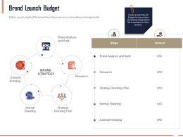 Brand Launch Budget Ppt Powerpoint Presentation Summary Information