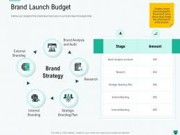 Brand Launch Budget Process Ppt Powerpoint Presentation Show Background