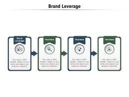 Brand Leverage Ppt Powerpoint Presentation Outline Shapes Cpb