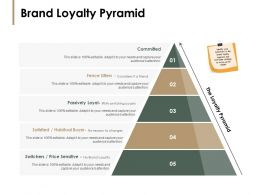 Brand Loyalty Pyramid Passively Loyal Ppt Powerpoint Presentation Pictures Backgrounds