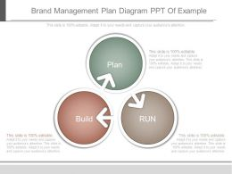 Brand Management Plan Diagram Ppt Of Example