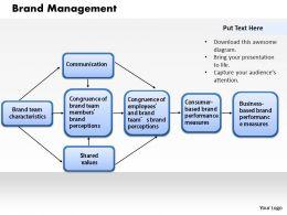 brand_management_powerpoint_presentation_slide_template_Slide01
