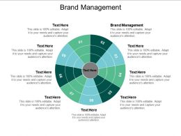 Brand Management Ppt Powerpoint Presentation Gallery Files Cpb