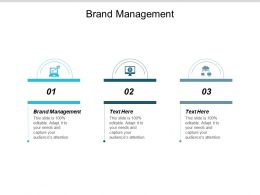 Brand Management Ppt Powerpoint Presentation Infographics Backgrounds Cpb