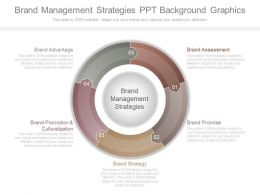 Brand Management Strategies Ppt Background Graphics
