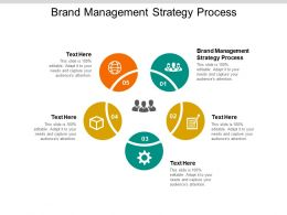 Brand Management Strategy Process Ppt Powerpoint Presentation Slides Cpb