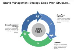 Brand Management Strategy Sales Pitch Structure Cash Management