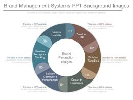 Brand Management Systems Ppt Background Images