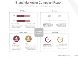 Brand Marketing Campaign Report Powerpoint Guide