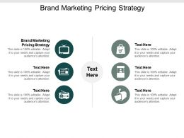 Brand Marketing Pricing Strategy Ppt Powerpoint Presentation Model Example Cpb