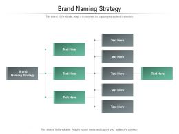 Brand Naming Strategy Ppt Powerpoint Presentation Model Portfolio Cpb