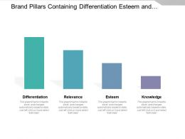 Brand Pillars Containing Differentiation Esteem And Knowledge
