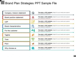 Brand Plan Strategies Ppt Sample File
