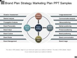 Brand Plan Strategy Marketing Plan Ppt Samples