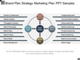 Brand Plan Strategy Marketing Plan Ppt Samples