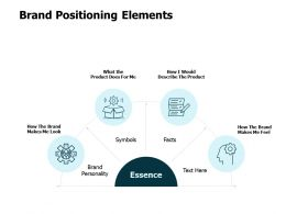Brand Positioning Elements Ppt Powerpoint Presentation Show Vector